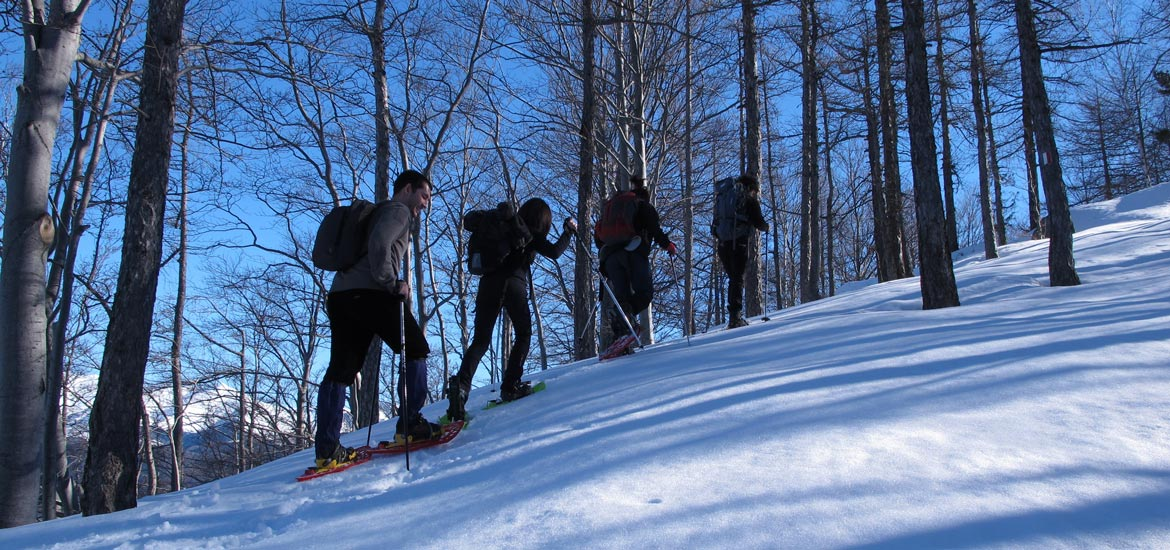 Snowshoeing excursions and tours near Turin