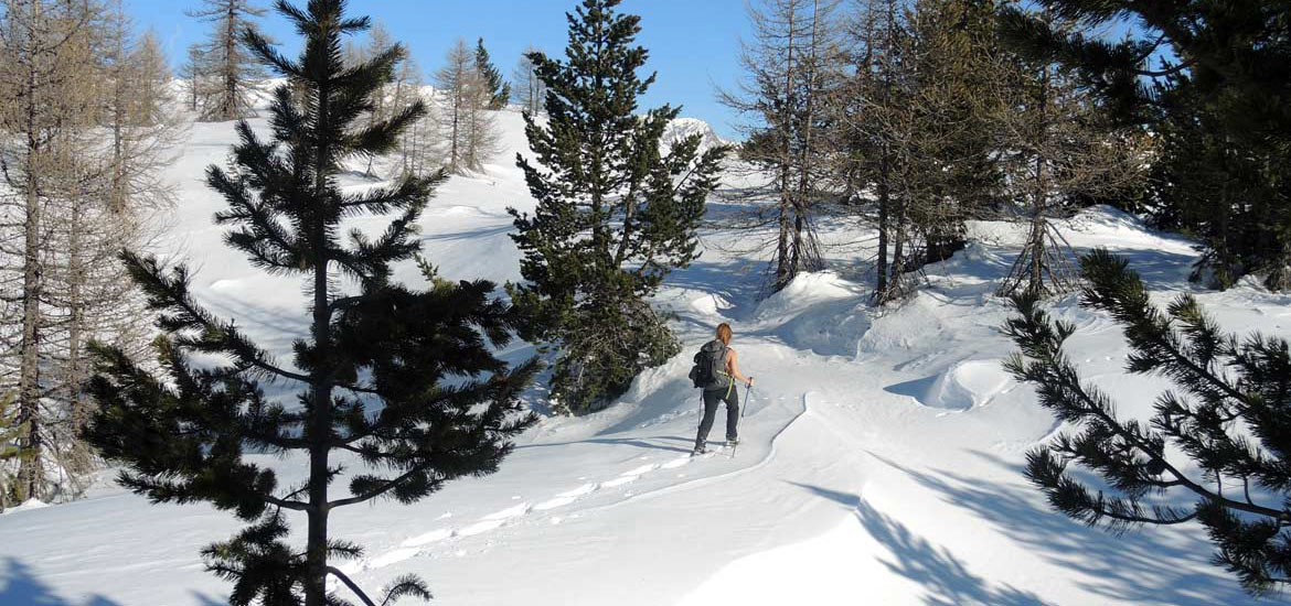 Hiking and trekking with snowshoes in Gran Paradiso