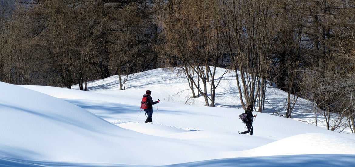 Snowshoeing excursions and tours in Aosta Valley