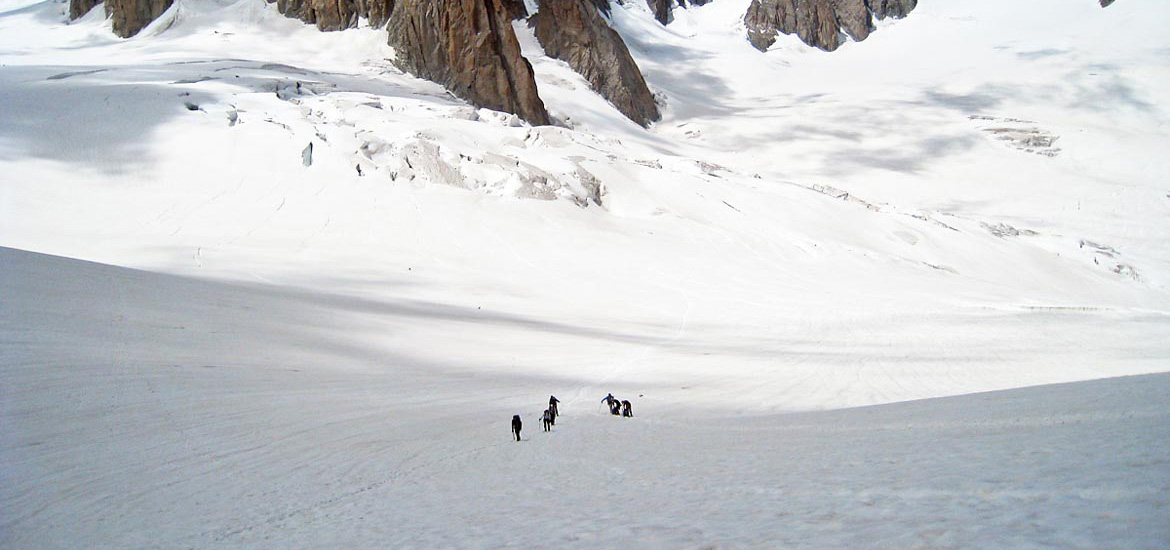 Mountaineering Aosta Valley Alps - Mont Blanc: Vallée Blanche glacier tour