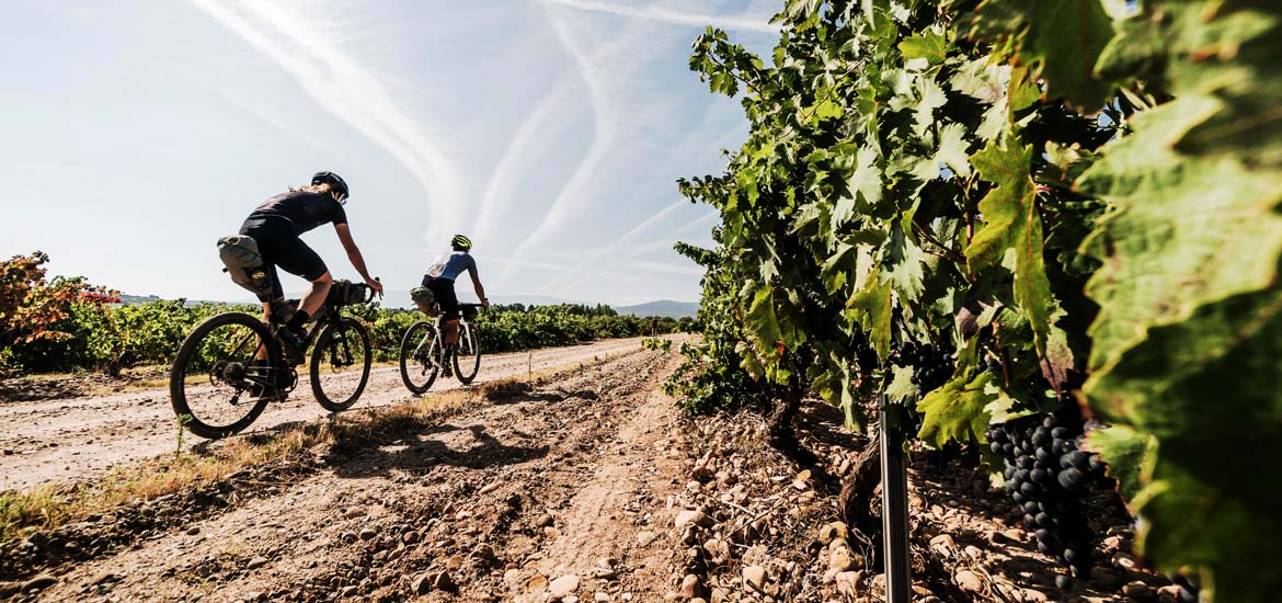 MTB, cycling and e-bike tour of Langhe, Piedmont