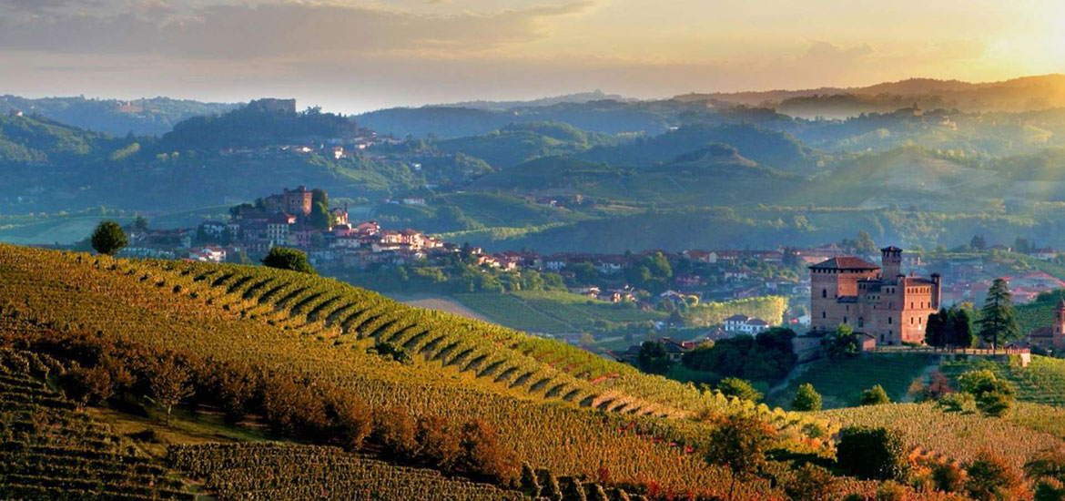 Cycling and wine tasting in Piedmont: Langhe region day tour with guide