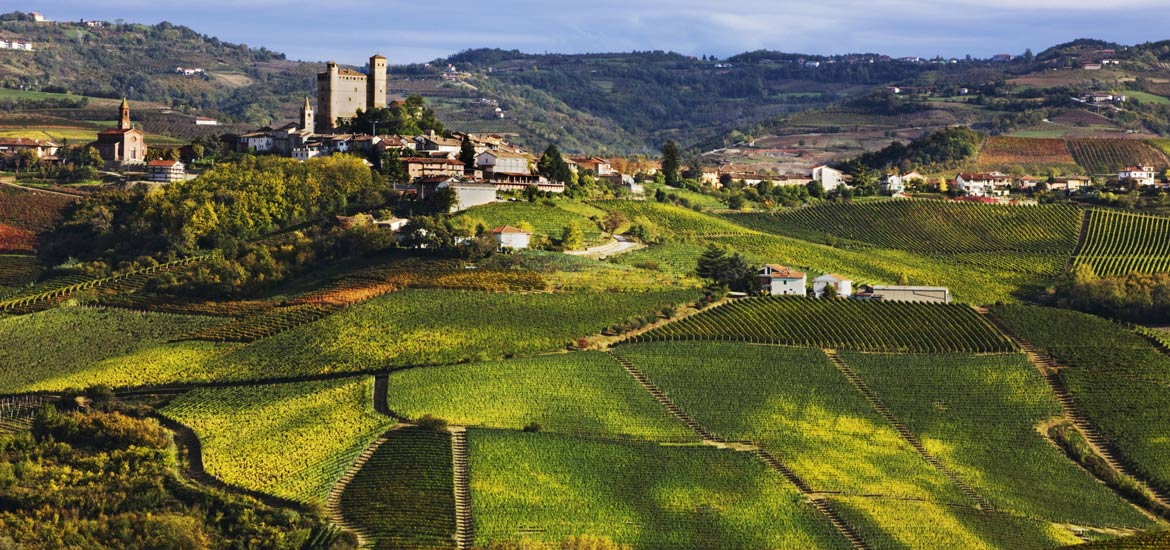 Langhe, Piedmont: e-bike or MTB day experience with guide and wine tasting masterclass
