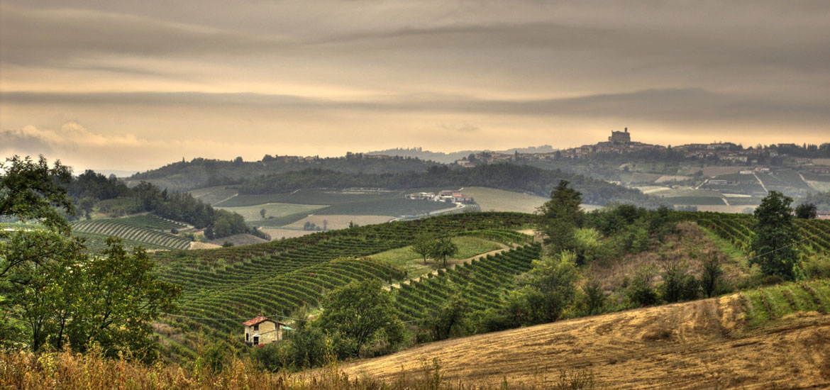 Bike tour in Langhe, Roero and Monferrato regions, Piedmont