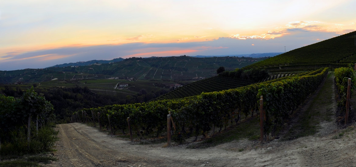 Cycling tour of Langhe, Roero and Monferrato - Piedmont