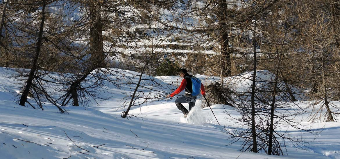 Snowshoeing excursion in the Alps of Piedmont and Aosta Valley with hiking guides