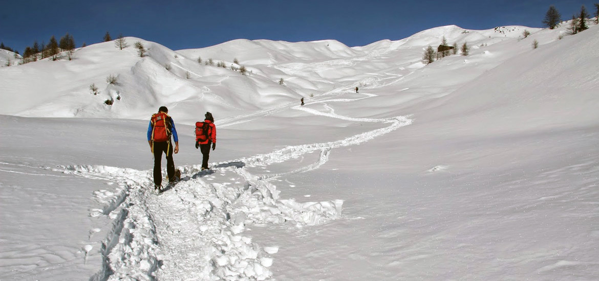 Snowshoeing tour in the Alps of Piedmont