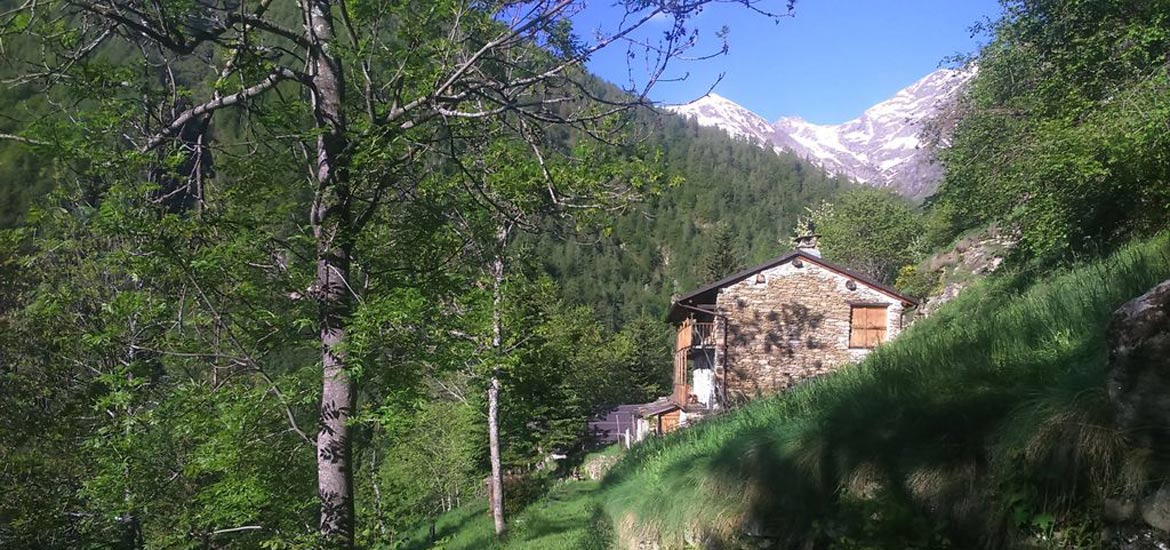 Hiking Into the Wild in the Alps: Weekend Tour in Piedmont