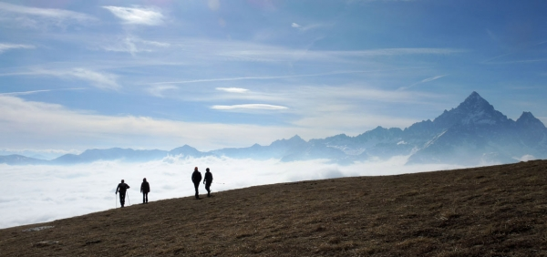 Day Hiking Excursion with Guide in the Alps - Turin and Piedmont Mountains
